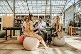 meeting vluv  | kies voor een gezonde werkplek bezoek Worktrainer.nl