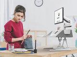 Flexidesk grijs met monitorarm | Bureau verhoger | kies voor een gezonde werkplek bezoek Worktrainer.nl