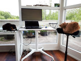 Klein zit-sta bureau Single Leg Desk Wit  | kies voor een gezonde werkplek | Bezoek Worktrainer.nl