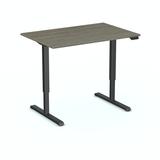 SteelForce 300 zit-sta bureau | Staan achter je bureau | Worktrainer.nl