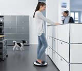 Ongo balansbord worktrainer.nl