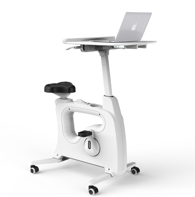 Flexispot - all-in-one Desk Bike