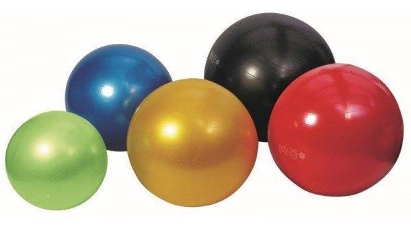 Zitbal - Gymnic Plus
